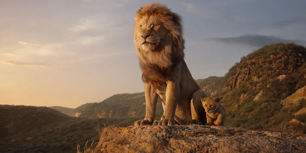 LION KING في البحرين خلال ١٠٠يوم