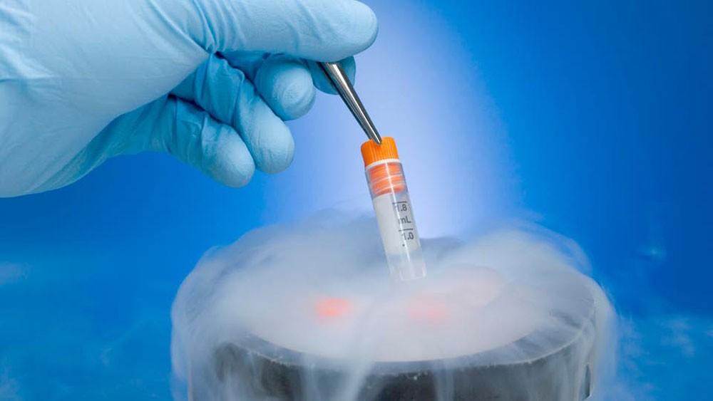 أميركا توقف تمويل الأبحاث القائمة على الأنسجة الجنينية