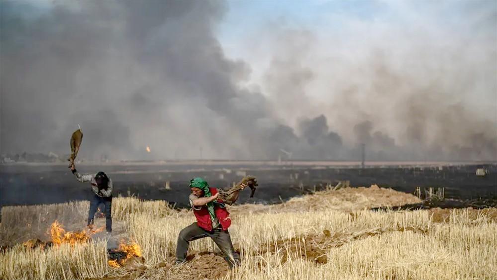 حرائق الشمال السوري مستمرة.. حاصدة محاصيل وأرواحاً
