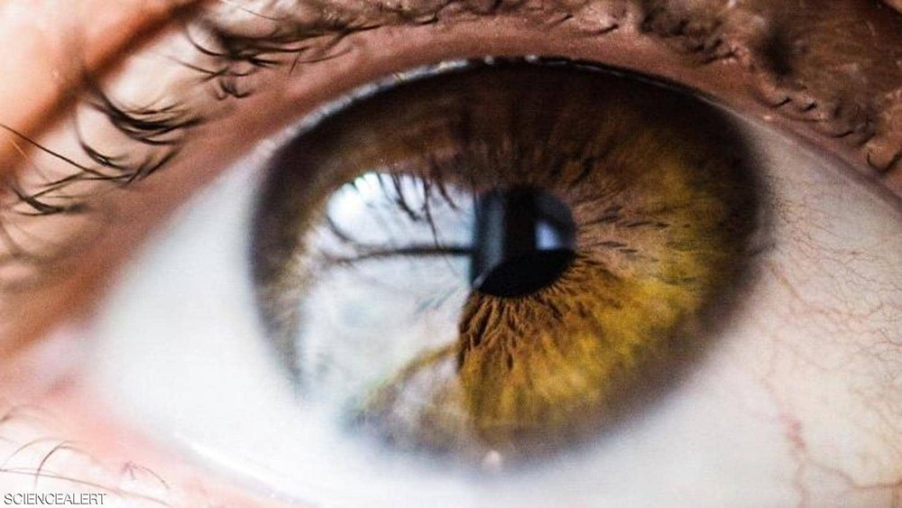 """تعرف إلى بكتيريا العين """"المفيدة"""""""