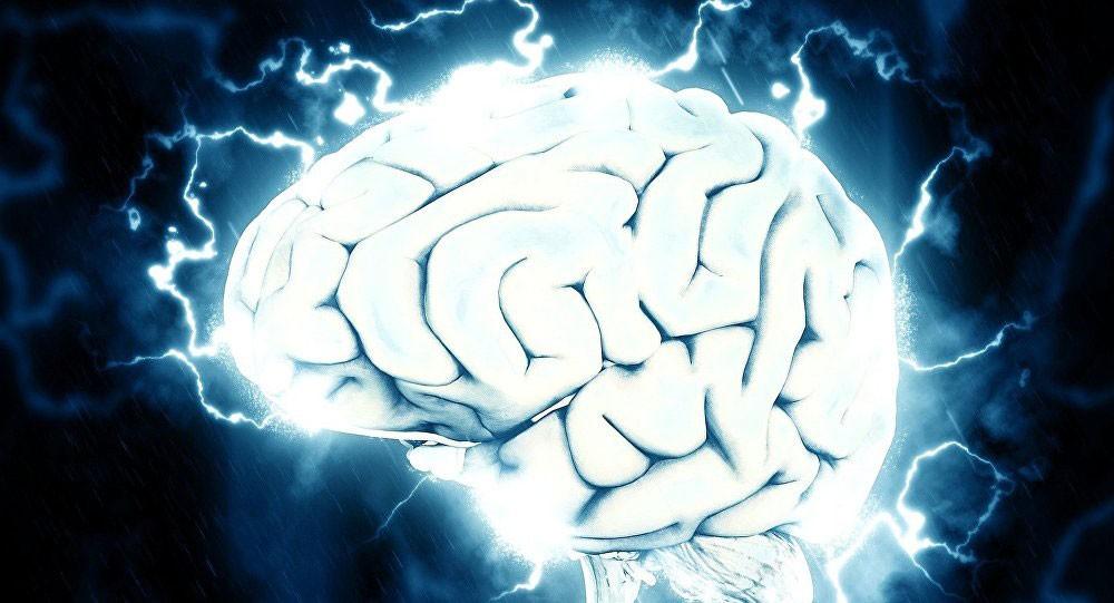العلماء يحددون المهنة الأكثر ضررا على دماغ الإنسان