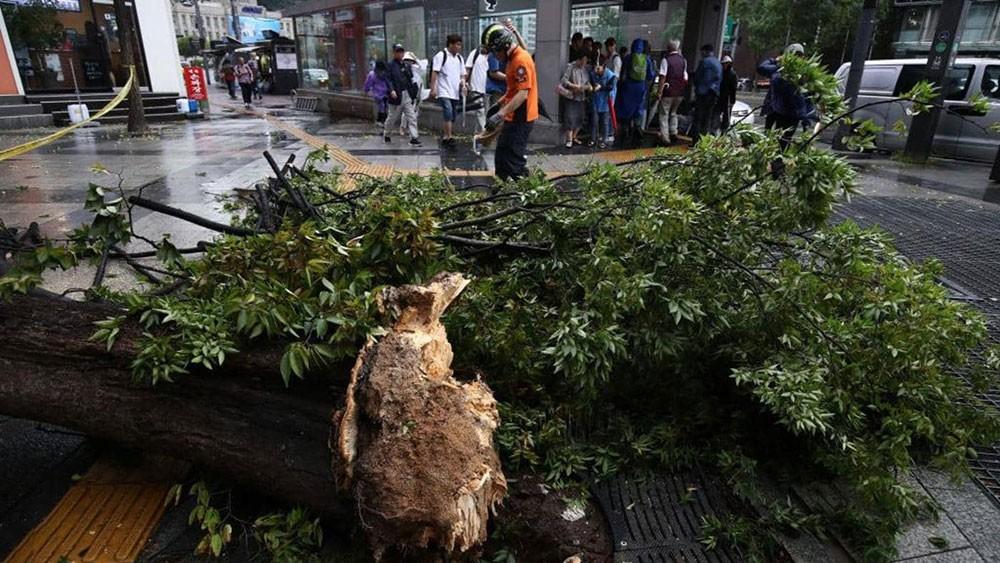 """إعصار """"لينغ لينغ"""" يخلف 8 قتلى في الكوريتين"""