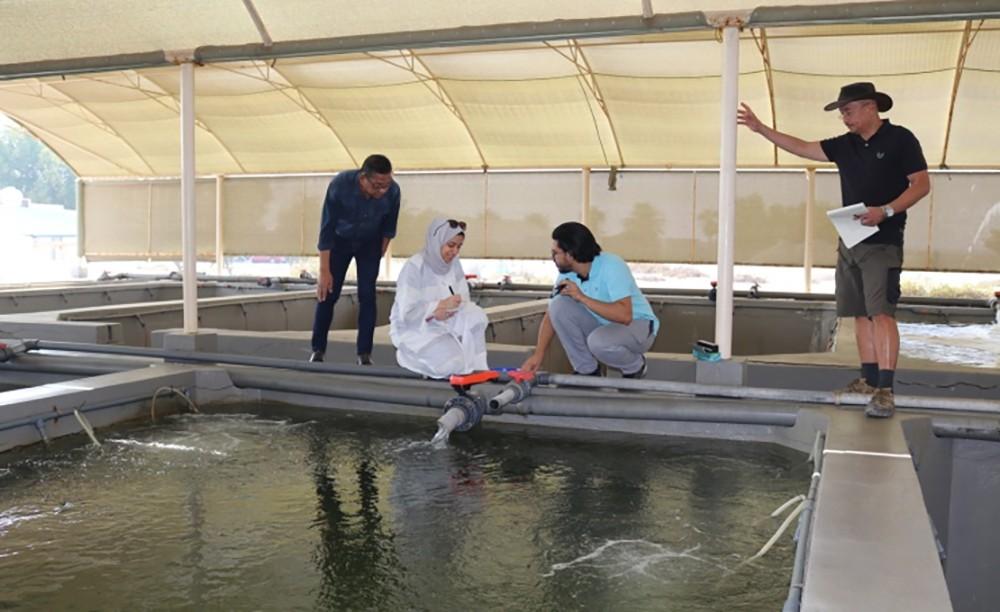 وكيل الزراعة والثروة البحرية: نُدرب بحرينيين على بناء الأحواض السمكية بأقل كلفة وبجودة عالية
