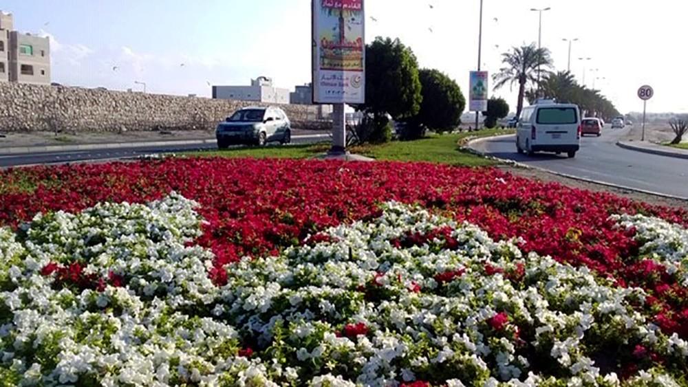 بلدية الشمالية تزرع ربع مليون زهرة موسمية ضمن خطتها التجميلية للشوارع