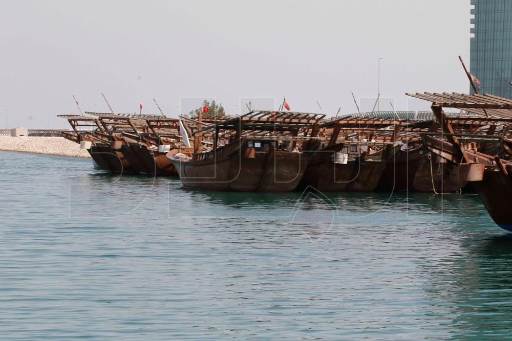 بالصور: خشب الأشجار... يثمر في البحار