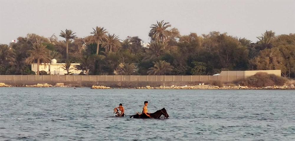 """بالصور: بهجة العيد بساحل كرانة.. جولة بحرية واستعراضات """"جيتسكي"""" وتحميم خيول وحمير!"""