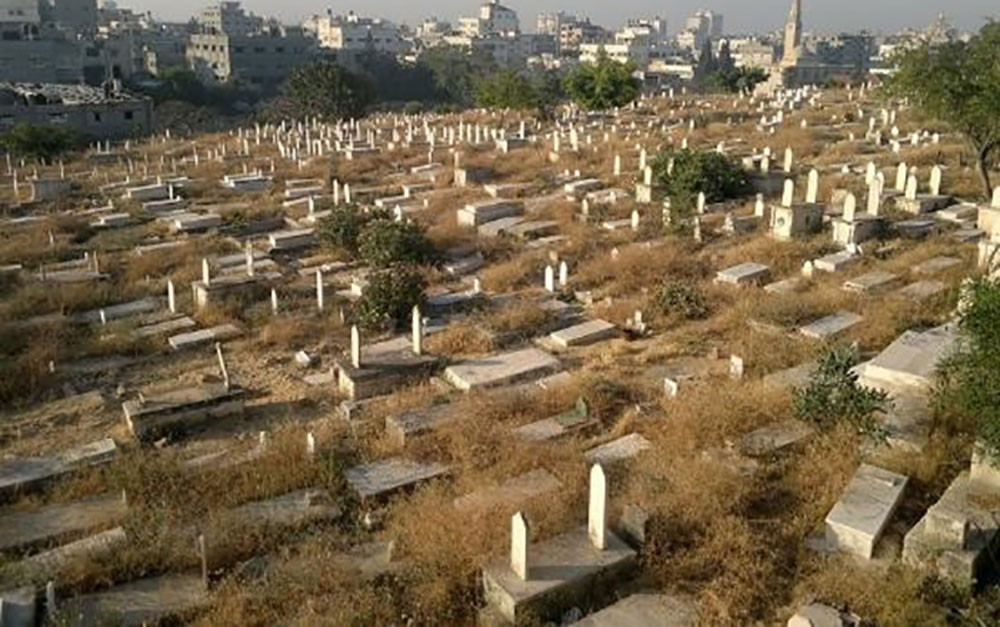 مقبرة غريبة سكانها ليسوا بشرًا