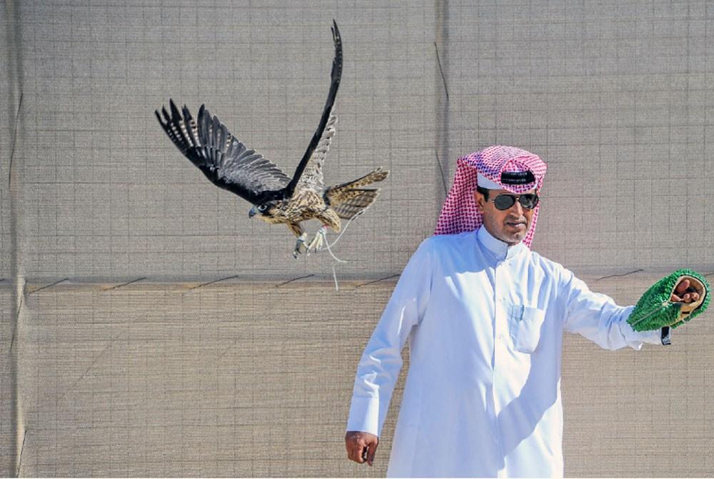 فريق الرفاع يحصد لقب الشواهين ببطولة ناصر بن حمد للصقور والصيد