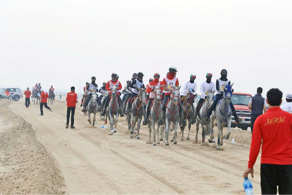 فرسان الإمارات يعلنون تحديهم ويؤكدون أهمية كأس جلالة الملك للقدرة