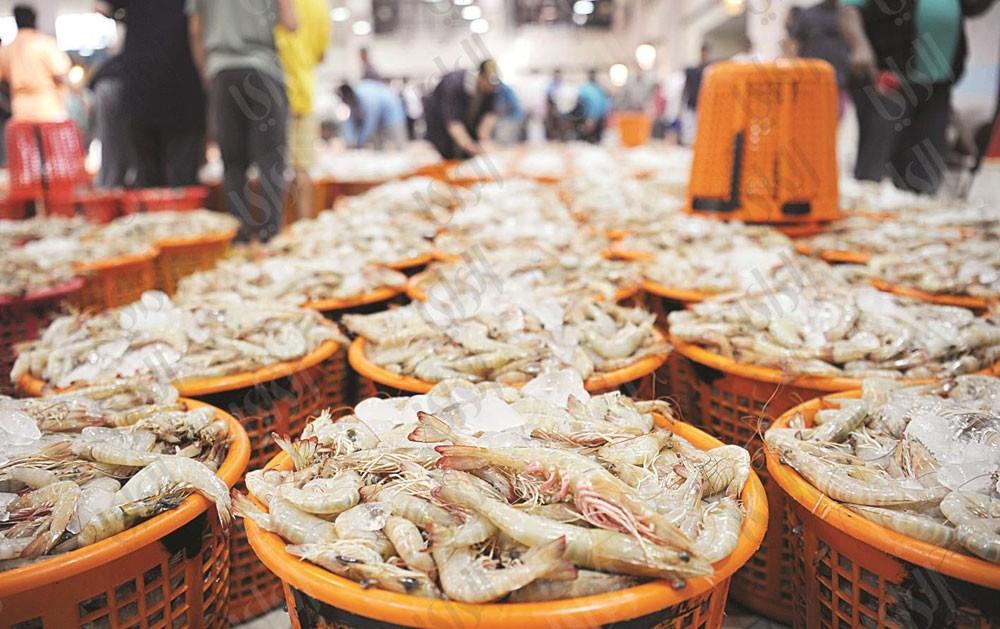 ضبط 3 قوارب مخالفة لقرار حظر صيد الربيان