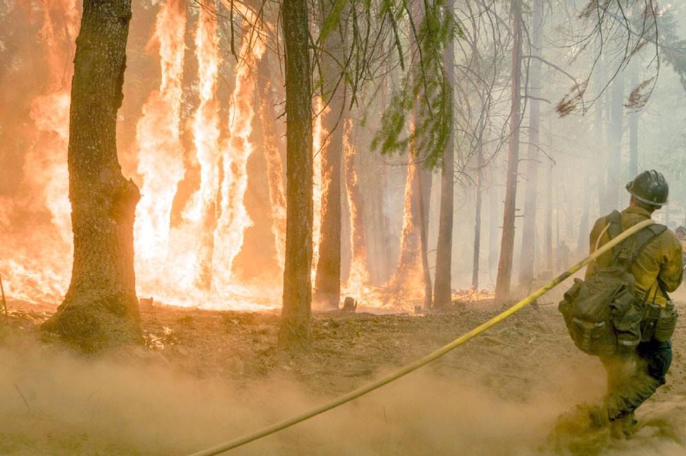 أكثر من 100 حريق غابات ضخم في أميركا