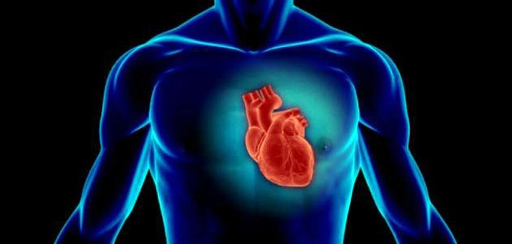 قلوب البشر تشيخ أسرع منهم