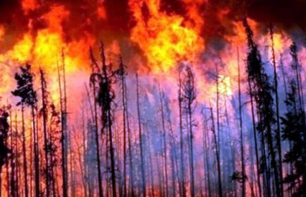 حرائق غابات تستعر في أستراليا