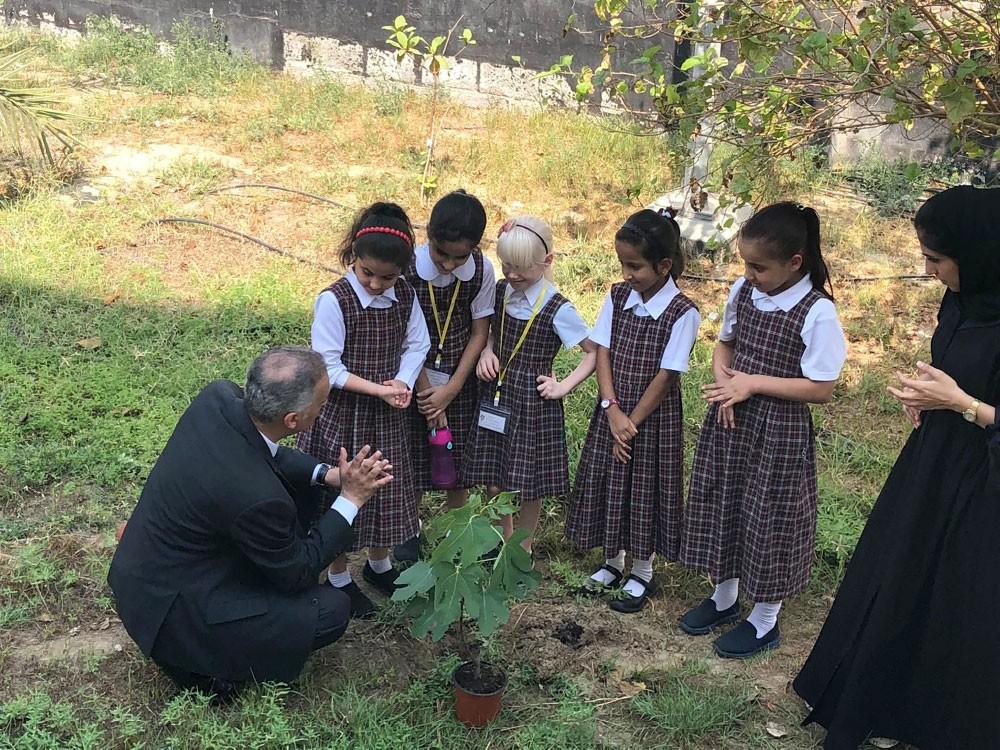 15 مدرسة تغرس الشتلات لتحفيز الطلبة زراعيا