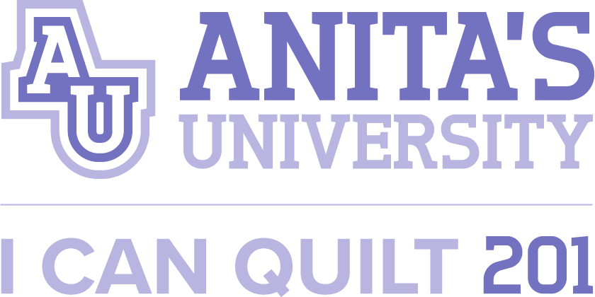 Anita's University: I Can Quilt 201