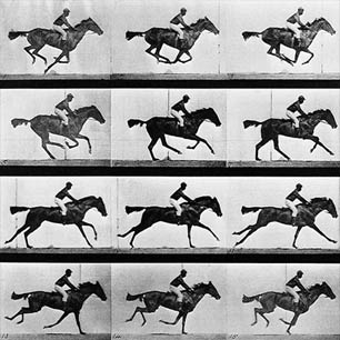 Eadweard Muybridge Canvas Art Prints