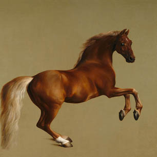 George Stubbs Canvas Art Prints