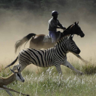 Riding South Africa