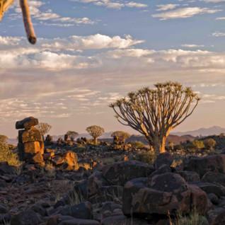 View over Kalaharis