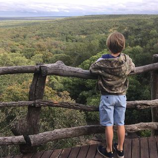 Waterberg safari