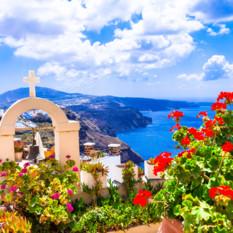 red flowers in Santorini