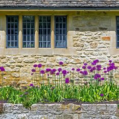 A close up image of a Cotswolds cottage and flowers