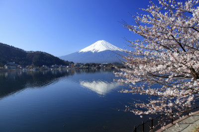 Japan's Mount Fuji