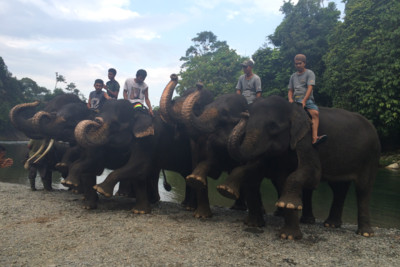 Locals atop their Elephants