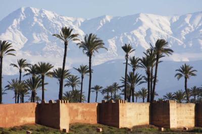 view of atlas mountains and palm trees in morocco
