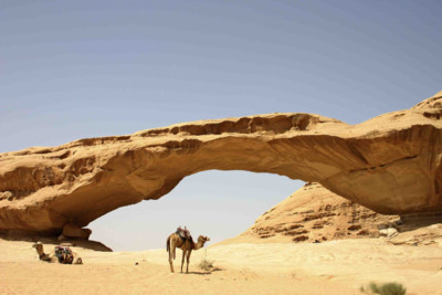 camel in an archway in the desert in Jordan
