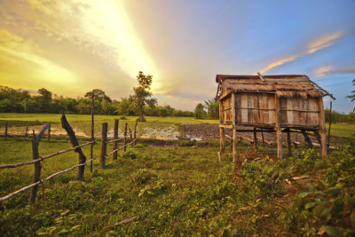 landscape of countryside in cambodia
