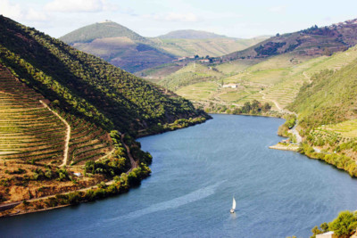 Boat sailing down Douro River