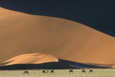 Sossuvli desert