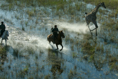 botswana horse back safari tour