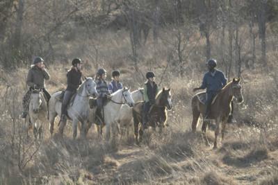 horse back safari for families in safa
