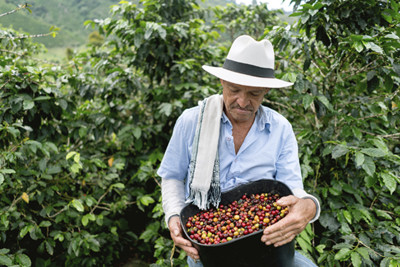 Colombian Coffee Farmer