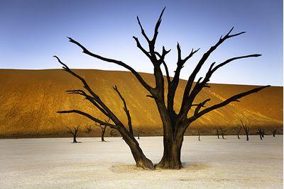 Namibia stark landscape
