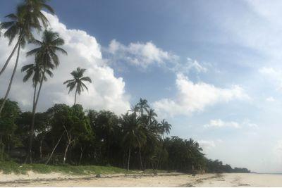 Kenya's South Eastern Beach