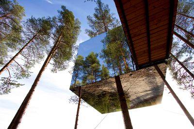 treehotel exterior