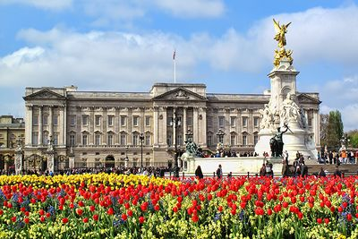 Buckingham Palace in the summer