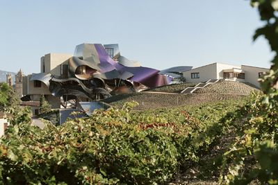 hotel in rioja with a vineyard