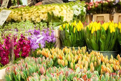 Flowers at Colombia Road Market