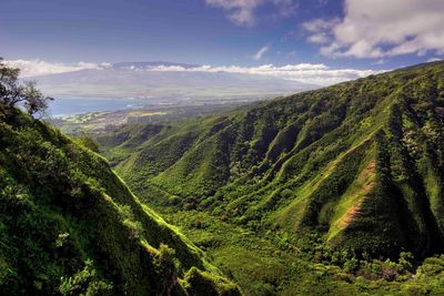 waihee ridge trail in Hawaii
