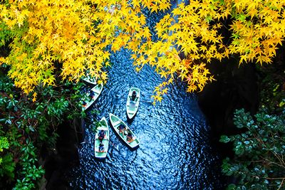 Boats in Kyushu