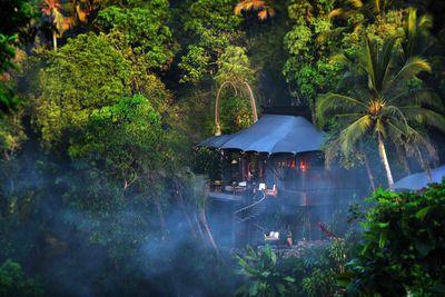 a private tent at Capella Ubud in the jungle