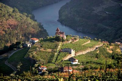 aerial view douro valley