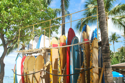 waikiki surf board stand