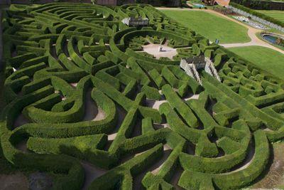 Blenheim Palace maze