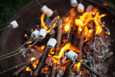 marshmallow roasting