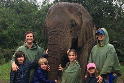Plettenberg Bay elephant